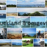 Reisblog Nieuw-Zeeland deel 1: Auckland & omgeving