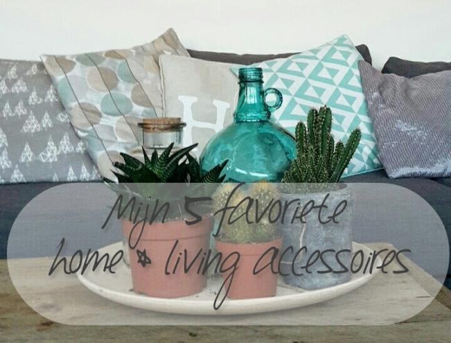 5-favoriete-homeliving-accessoires-healthylivinglisan